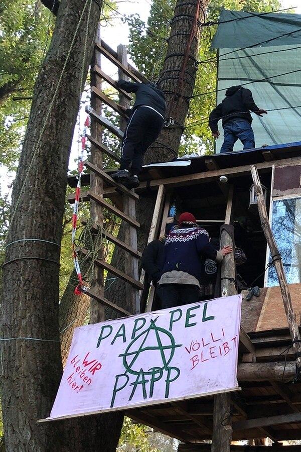 Vollhöfner Wald: Ultimatum für Baumhaus läuft ab