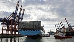 """Das Containerschiff """"Emma Maersk"""", eines der größten Containerschiffe der Welt, legt am Terminal in Waltershof an © dpa Foto: Axel Heimken"""