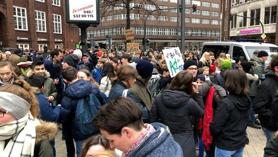 Greta Thunberg nimmt an Demo in Hamburg teil