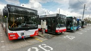 Busse des Hamburger Verkehrsverbundes stehen auf dem Betriebshof in Wandsbek für ihren Einsatz bereit. © picture alliance/dpa Foto: Ulrich Perrey