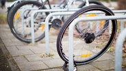 Ein zurückgelassenes Hinterrad von einem Fahrrad steht nach einem Fahrraddiebstahl an einem Fahrradständer. © picture alliance / Martin Gerten/dpa Foto: Martin Gerten