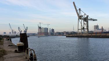 Blick vom historischen Teil des Hamburger Hafens auf dem Kleinen Grasbrook Richtung Hafencity und zur Elbphilharmonie. © NDR Fotograf: Daniel Sprenger