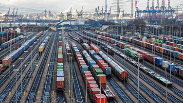 Bahn-Waggons mit Containern stehen in Hamburg im Bahnhof Alte Süderelbe auf den Gleisen. © picture alliance / dpa Foto: Angelika Warmuth