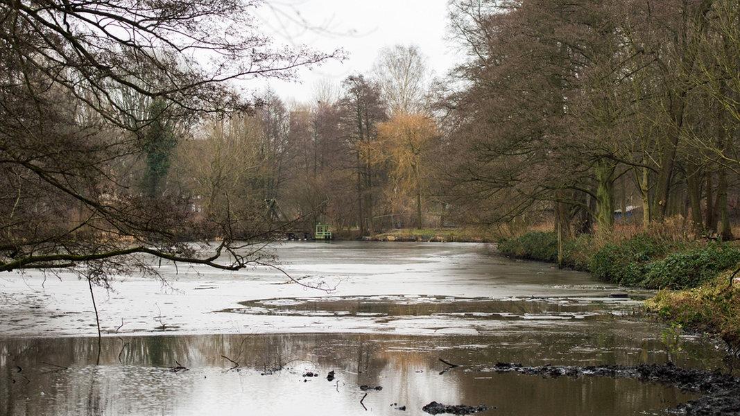 Wetter Eissendorf