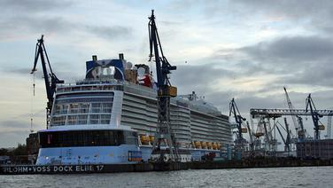 "Die ""Quantum of the Seas"" in Hamburg. © NDR Fotograf: Judith Pape"