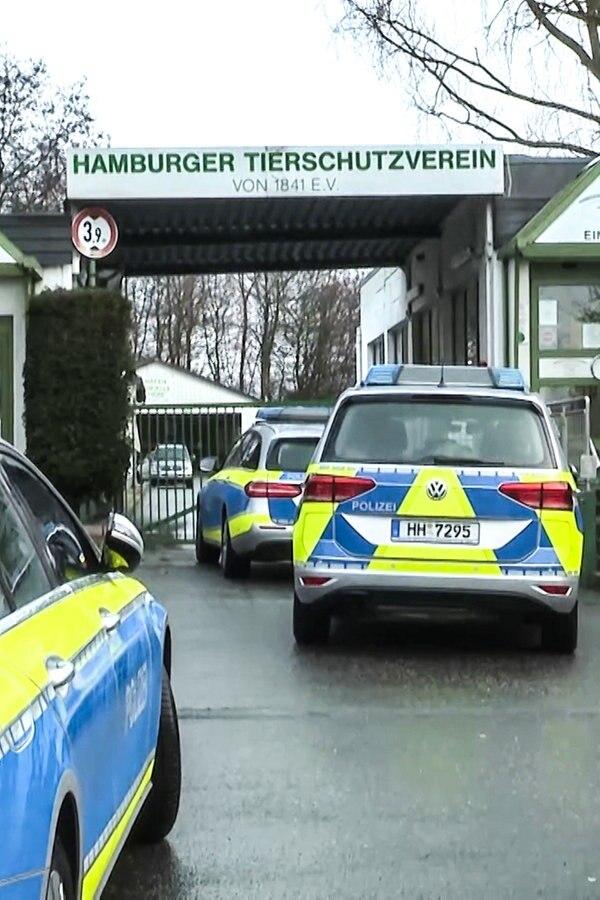 Tierärzte und Polizei durchsuchen Tierheim