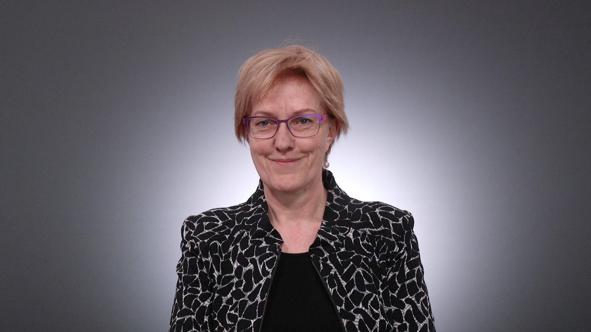 Heike Sudmann, DIE LINKE