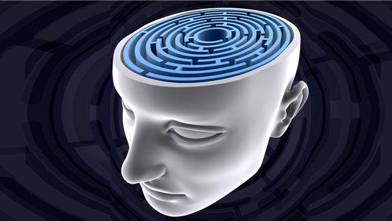 Schematische Darstellung eines offenen Kopfes, in dem sich ein Labyrinth befindet. © iStockphoto.com Foto: ktsimage