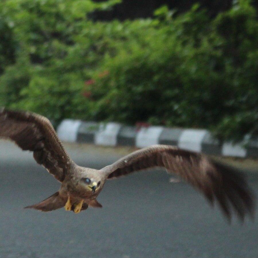 Gähnende Leere in Delhi