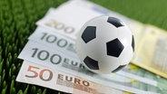 Auf einem Stück Kunstrasen liegen mehrere Geldscheine sowie ein kleiner Fußball. © dpa picture alliance