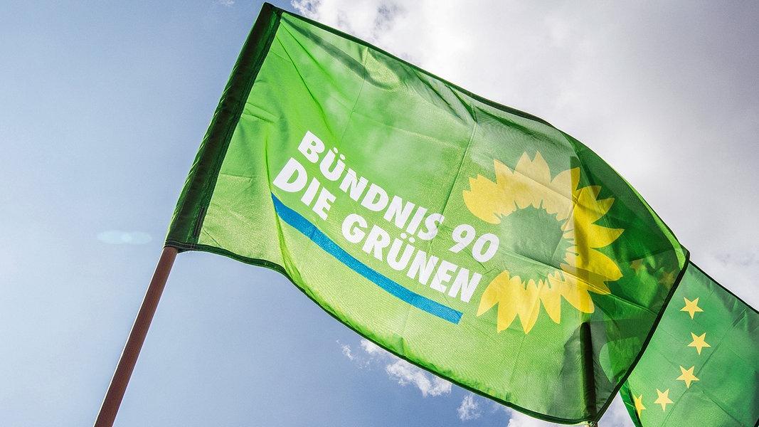 Grüne Europawahl 2021 Programm