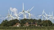 Windräder in Ostfriesland. © dpa picture alliance