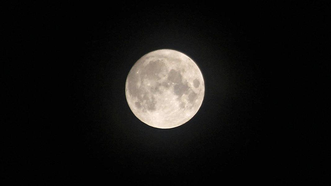 Die abenteuerliche Reise einer Maus zum Mond