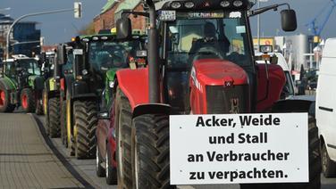 Landwirte aus Mecklenburg-Vorpommern fahren während einer Sternfahrt mit Treckern durch die Rostocker Innenstadt.   dpa Bildfunk