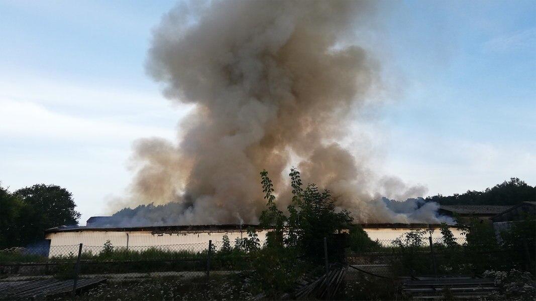Kolbow: Stall mit 10.000 Schweinen in Flammen