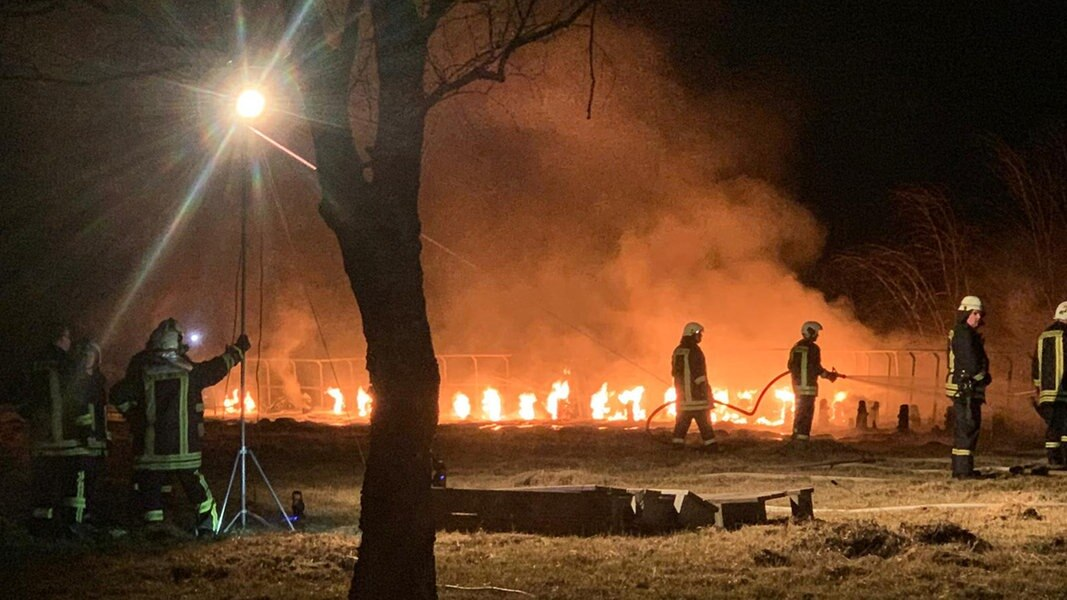 Feuer Mecklenburg