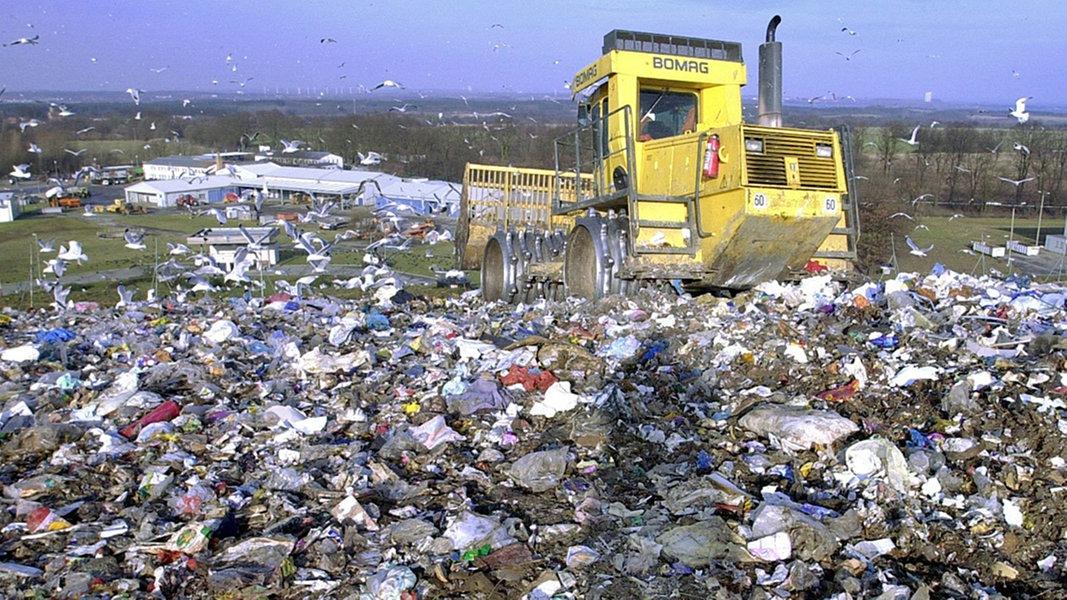 Mülldeponie Schönberg