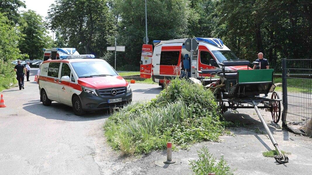 Zwei Schwerverletzte bei Kutschunfall in Warnemünde