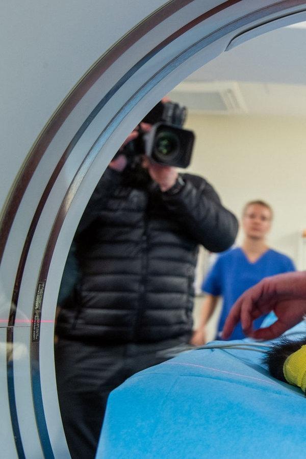 """Besonderer Patient im CT: Kein Tumor bei """"Polly"""""""