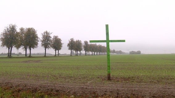 Grüne Kreuze Auf Felder