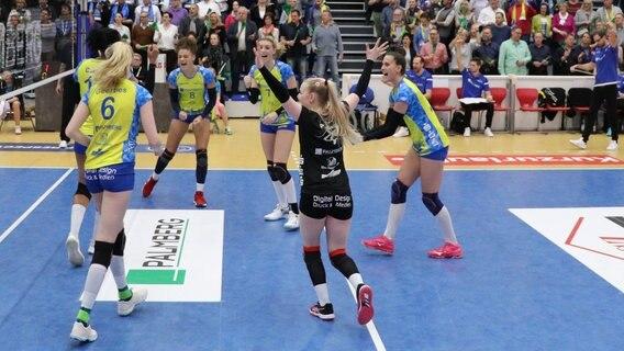 Volleyball Ssc Gewinnt Klar Gegen Potsdam Ndrde Sport Mehr Sport
