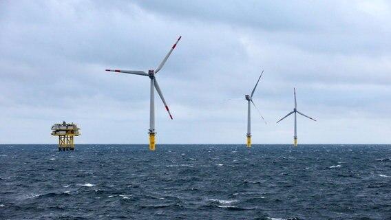 Dar 223 Gemeinden Gegen Offshore Windpark Ndr De