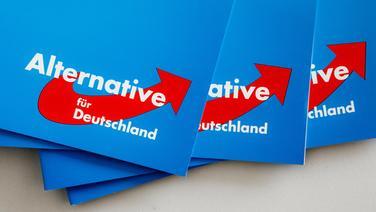 Das Logo der Alternative für Deutschland (AfD) ist auf Parteibroschüren zu sehen. © picture alliance Foto: Markus Scholz