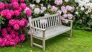 Gartenbank vor blühenden Rhododendron-Büschen © fotolia. Fotograf: Debu55y