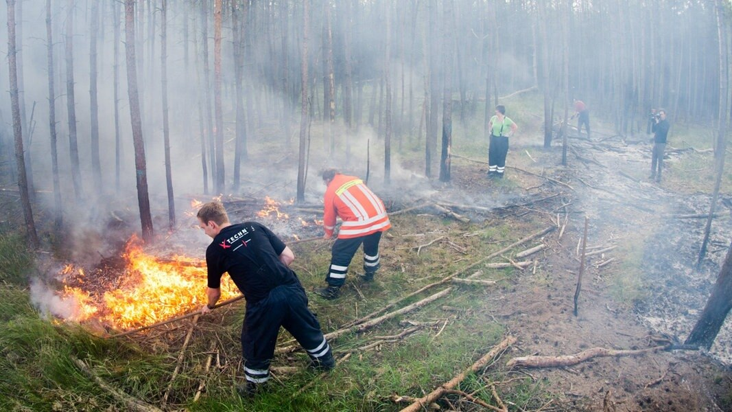 Waldbrände: Zunahme um 70 Prozent