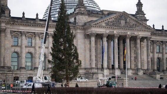 Weihnachtsbaum Berlin.Harzer Weihnachtsbaum In Berlin Angekommen Ndr De Nachrichten