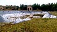 Ein Rückhaltebecken für Wasser umgeben von einer wilden Vegetation. © NDR