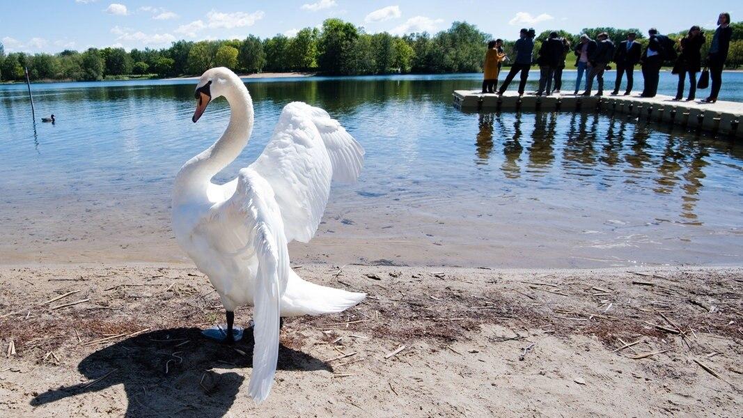 Gute Noten für Niedersachsens Badeseen