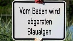 """Ein Schild """"Vom Baden wird abgeraten - Blaualgen"""" steht am Hohnsensee. © dpa-Bildfunk Foto: Julian Stratenschulte"""