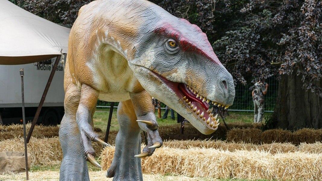 Unfallursache: Dinosaurier im Kreisverkehr