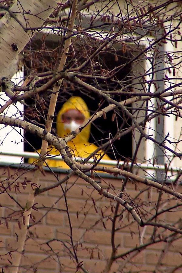 Seuchenalarm: Ebola-Verdacht in Hannover