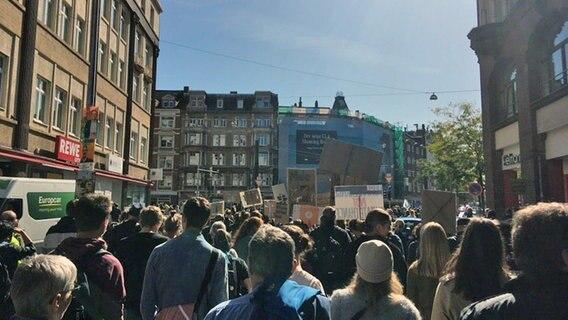 """""""Fridays for Future""""-Demos ziehen durchs Land"""