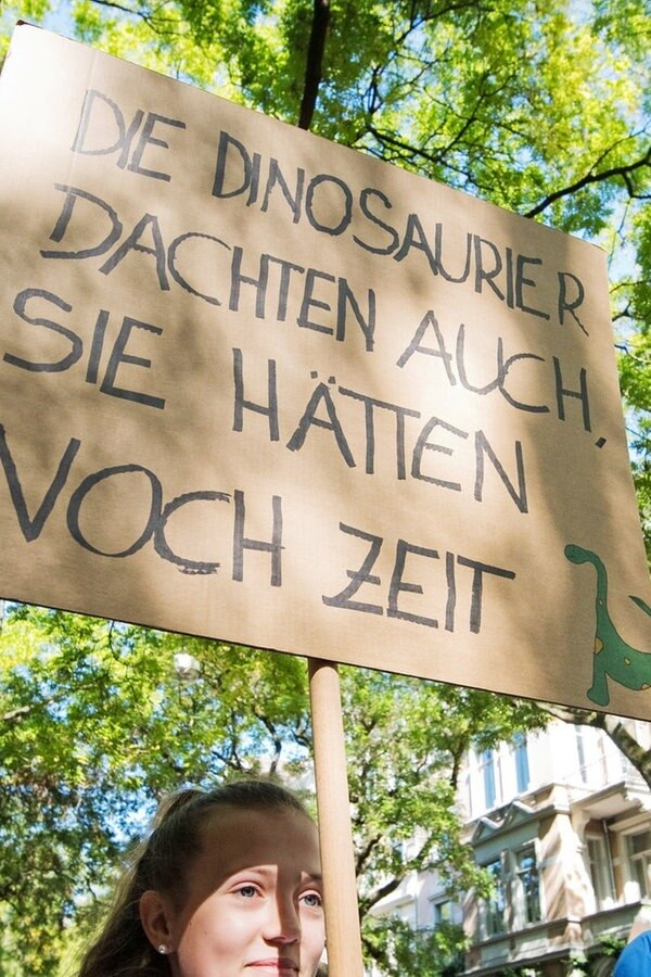 """""""Fridays for Future"""": Niedersachsen protestieren"""