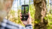 """Rolf Jantz, der zu der Community der """"Naturgucker"""" gehört, fotografiert mit einer App auf seinem Smartphone einen Baumstamm im Landkreis Celle, um den Baum zu bestimmen. © dpa-Bildfunk Foto: Moritz Frankenberg"""