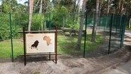 Ein Schild steht im Serengeti-Park Hodenhagen an einem gesonderten Gehege, in dem zwei vom Rudel separierte Löwen gehalten werden. © dpa Foto: Julian Stratenschulte