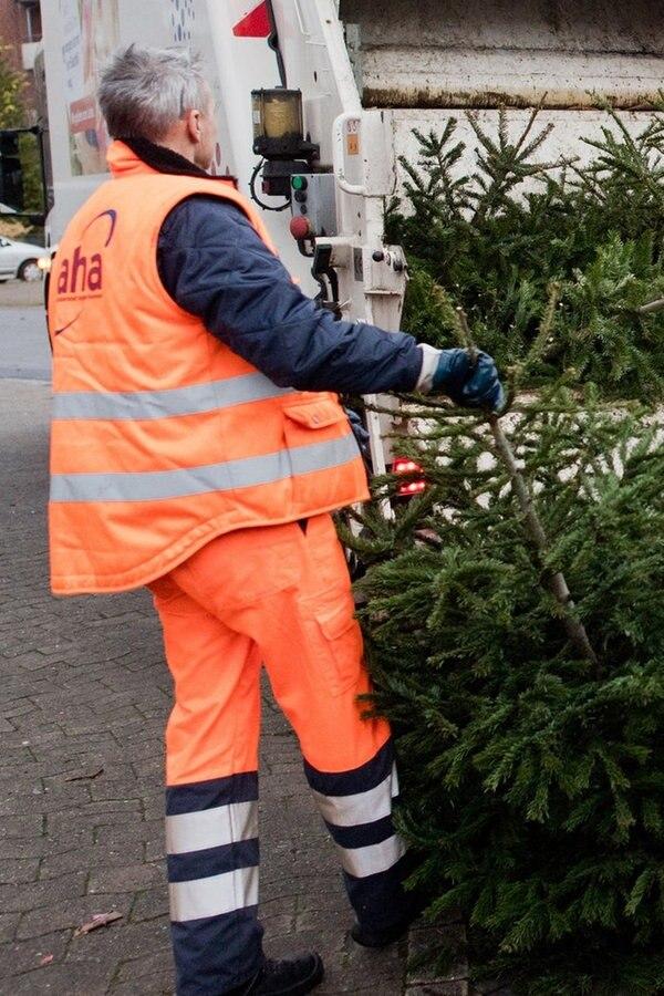 Ndr Weihnachtsbaum.Serverok Search