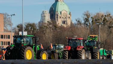 Auf dem Schützenplatz in Hannover stehen Traktoren, im Hintergrund ist das Neue Rathaus zu sehen.   dpa - Bildfunk