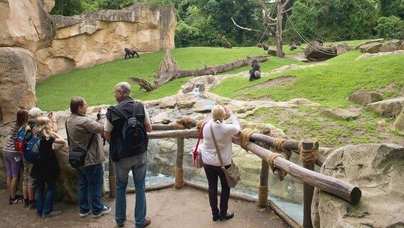 perfekt inszenierte exotik im zoo hannover ratgeber reise tierparks. Black Bedroom Furniture Sets. Home Design Ideas