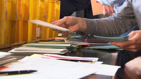 People sort election papers.  © NDR