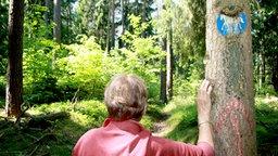 Eine Frau schaut einen Waldweg entlang während sie an einem Baum lehnt. © dpa-Bildfunk Foto: Björn Vogt