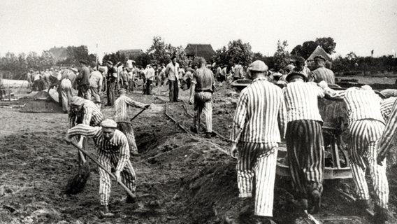 Leben Im 2. Weltkrieg