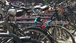 Mehrere angeschlossene Fahrräder. © NDR