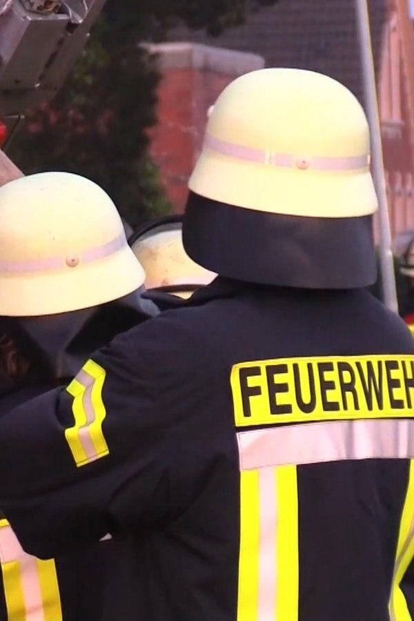 Stallbrand in Steinfeld: 40 Bullen tot