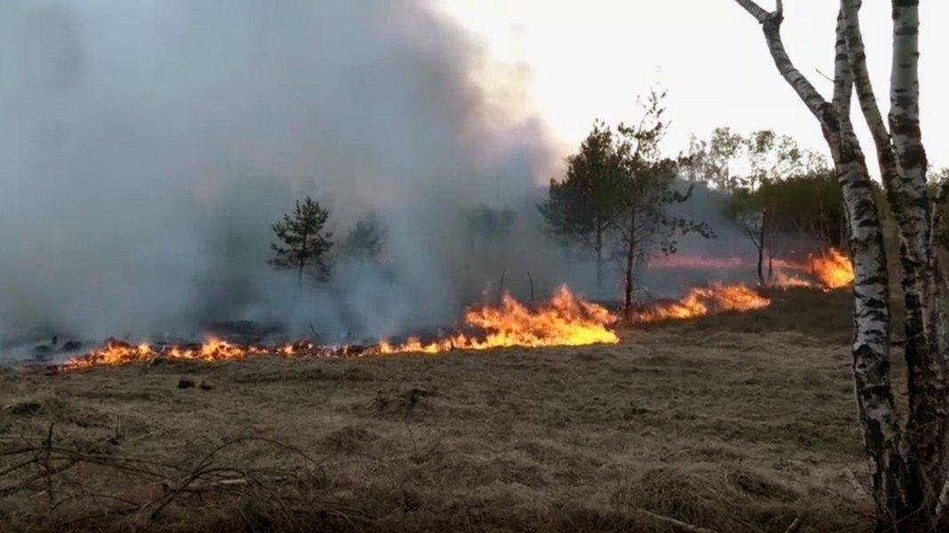 Waldbrandgefahr Niedersachsen