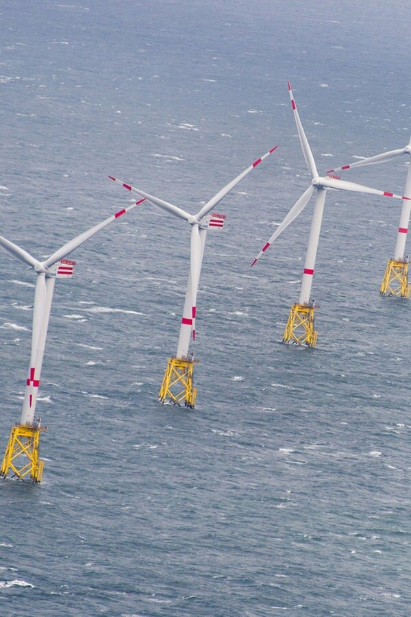 NABU warnt vor Wind-Industrieparks in der Nordsee