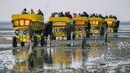 """""""Duhner Loch"""": Problem für Kutschen im Watt"""
